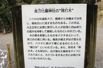 金刀比羅神社 (5).JPG