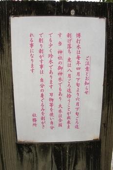 金刀比羅神社 (9).JPG