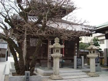 恵光院 (5).JPG