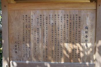 梅林寺 (11).JPG